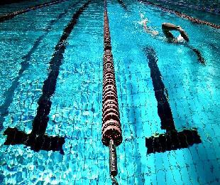 여러분이 다니는 수영장! 수질관리 제대로 되고 있나요?